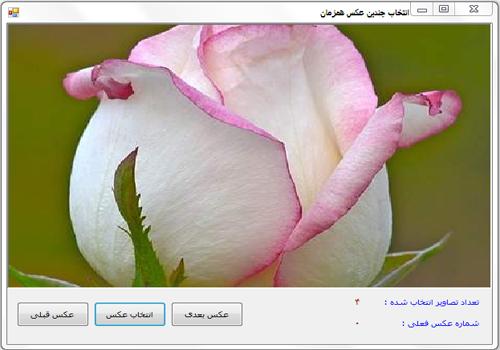 پروژه نمایش همزمان چندین عکس در C#