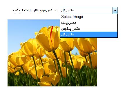 پروژه انتخاب و نمایش عکس از بانک اطلاعاتی sql server